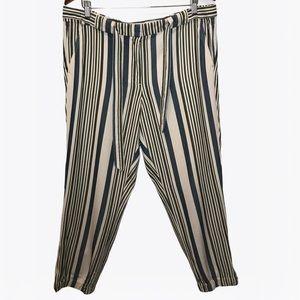 LOFT by Ann Taylor Trousers Striped Pants - 12